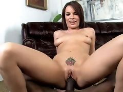 Fairly Buxom Pallid Hoe Called Dana Dearmond Passionately Rails Hard Big Black Cock