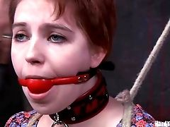 Restrain Bondage Sandy-haired Fuck Toy Having Her Bum Spanked When Tantalized