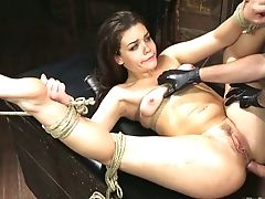 Tied Up Whore With Spread Apart Gams Kimber Forest Is Analfucked Hard